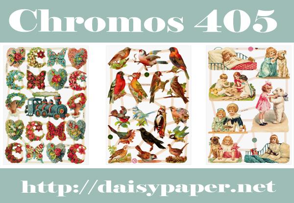 ドイツ製 クロモス【DAISY】CHROMOS、chromos、グランツビルダー、ドイツ、Germany、汽車、蝶、野鳥、キツツキ、小鳥、バラ、白くま、テディベア、スクラップピクチャー、デコパージュ