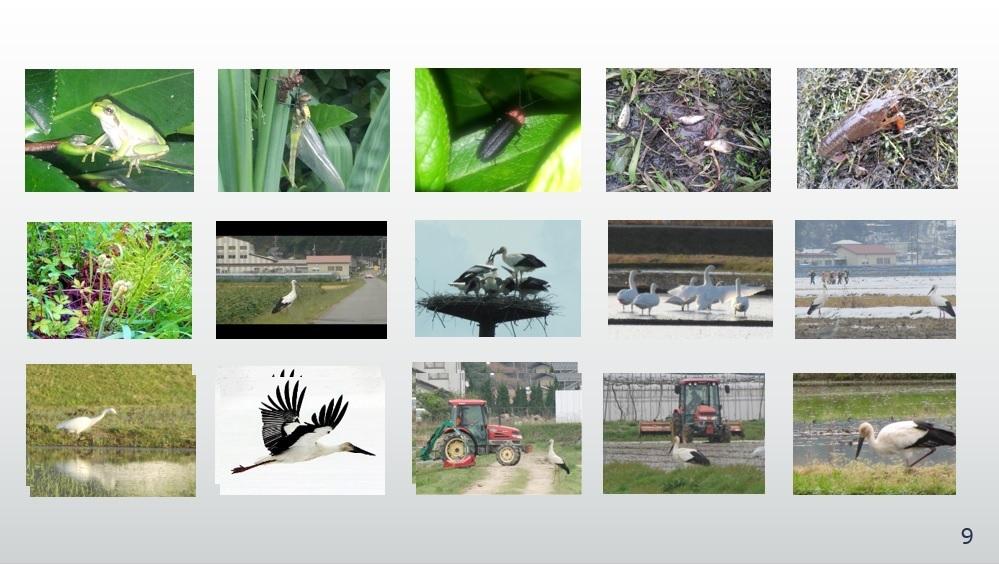 循環農法バイオマス