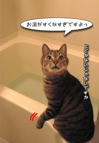 水たりない!