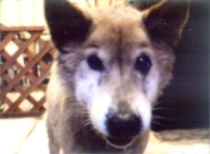 20041102.jpg