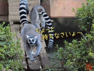 20091124_4.jpg