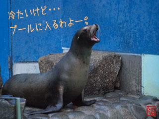 20091124_8.jpg