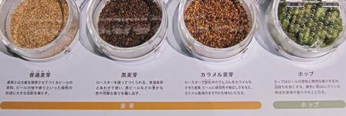 麦芽ホップ実物札幌麦酒博物.jpg