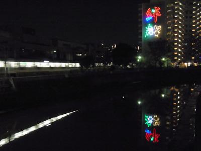 neon1_1.jpg