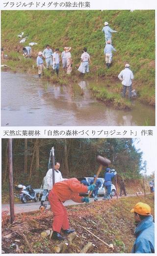 日田市民環境会議水と森2