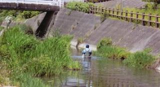 陣屋川をよくする会除草
