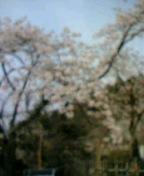 20070408_98500.jpg