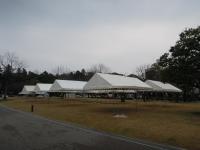 ピシッときれいに並ぶテント