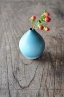 山崎美和 赤い実青い実