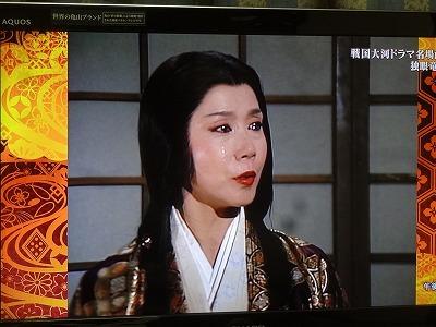 s-masamune20200614 (12).jpg