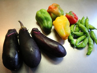 s-eggplants_power (2).jpg