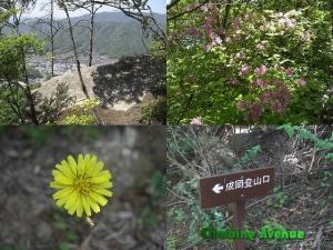 鉾取山・原山・天狗防山
