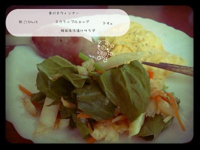 韓国風浅漬けサラダ