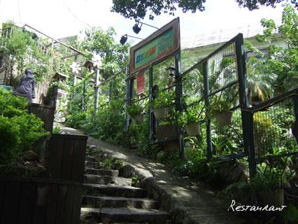 天母古道森林花園