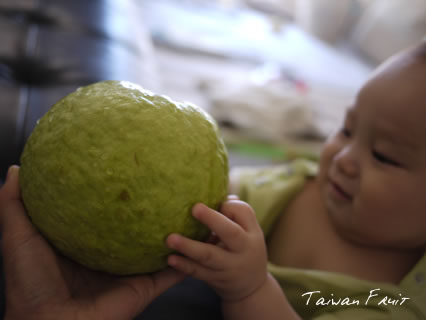 taiwanfruit04.jpg