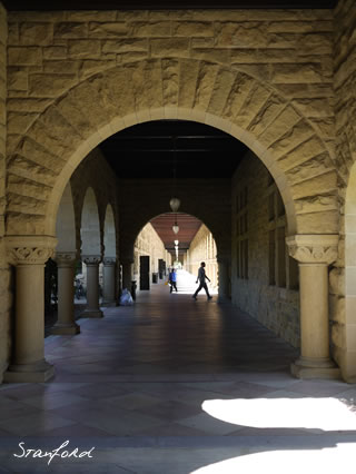 Stanford13.jpg