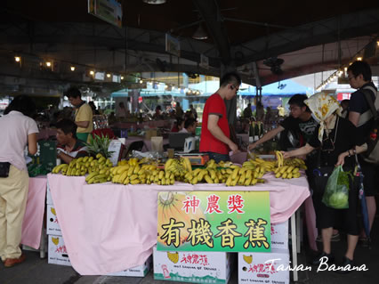 Taiwan Banana3.jpg