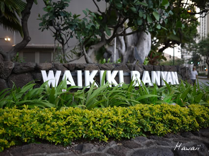 Waikiki Banyan.jpg