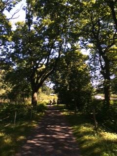 stochholm (2).JPG