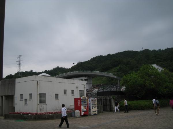 IMG_3976.JPG