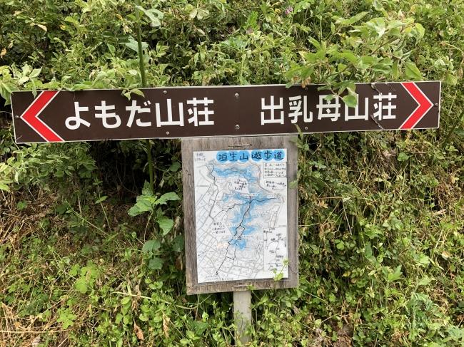 IMG_8121.JPG
