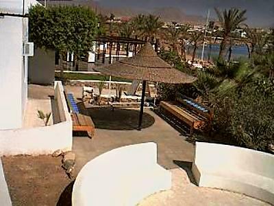 エジプト ライブカメラ