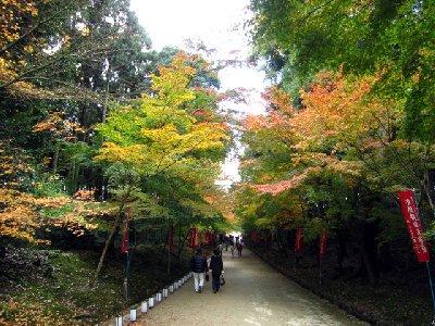 参道2(醍醐寺).JPG