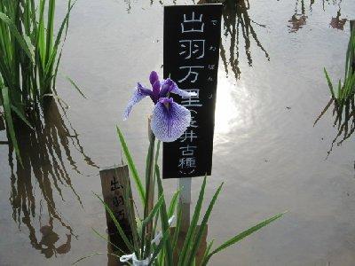 北山公園5.JPG