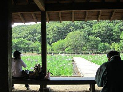 北山公園1.JPG