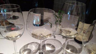 wine3(lacime).jpg