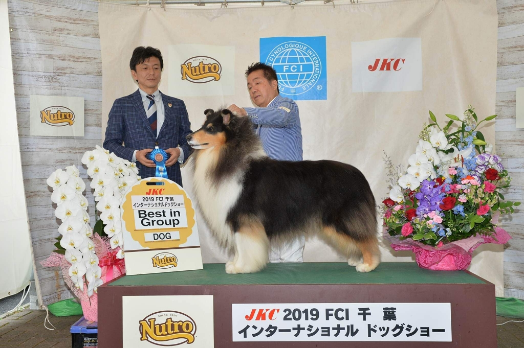 FCI千葉インター ラフコリー ポー ベストイングループ