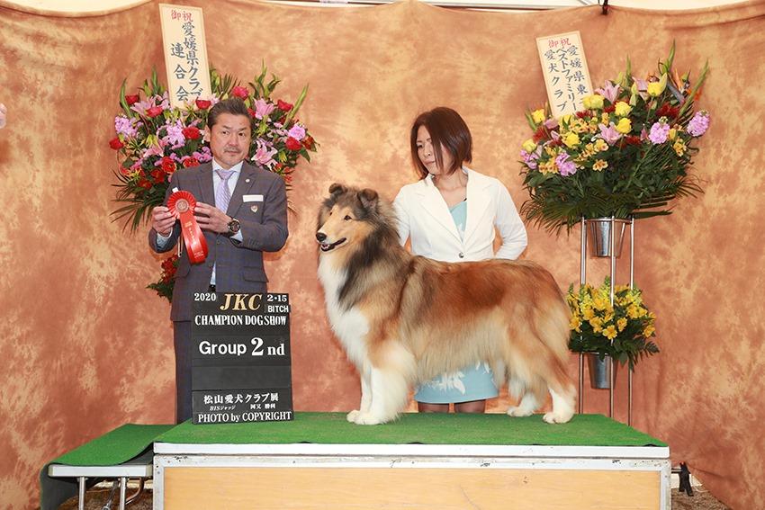 ラフコリー モネ 松山愛犬クラブ G2
