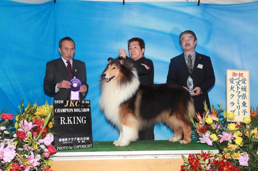 ラフコリー デルタ 愛媛県クラブ連合会 Rキング獲得!