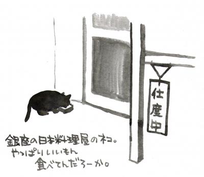 銀座の日本料理屋の猫。やっぱりいいもん食べてんだろうか。