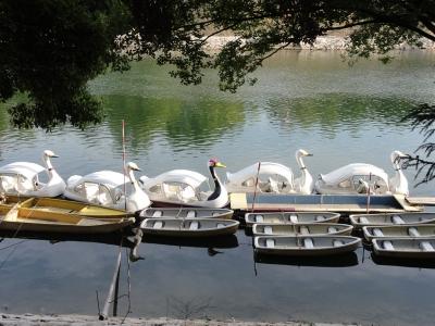 丹頂鶴のボート