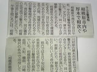 記事_20101020