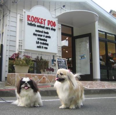 ROCKET DOGにて