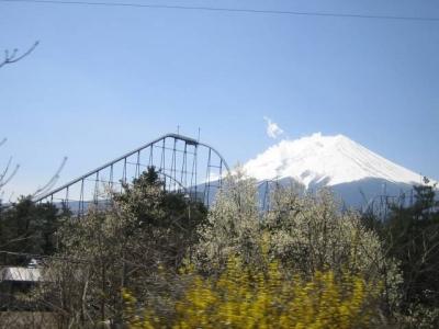 富士山とフジヤマ(富士急ハイランド)