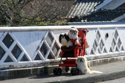 橋のたもとで記念撮影