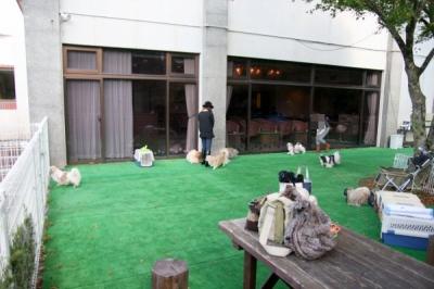 ドッグラン(愛犬広場)
