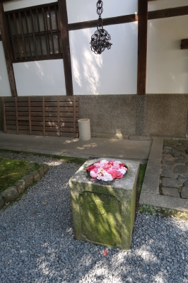 京都 残照 paris