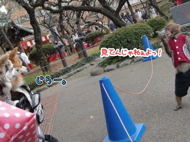 ファイル0013.jpg