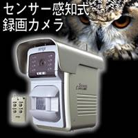 センサー自動撮影 録画カメラ 400ショット C-800