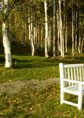 高原のベンチ - 無料写真素材