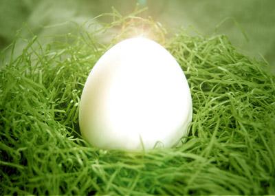 卵/生命イメージ