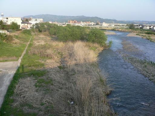荒川上八木田橋下流の堤外水路整...