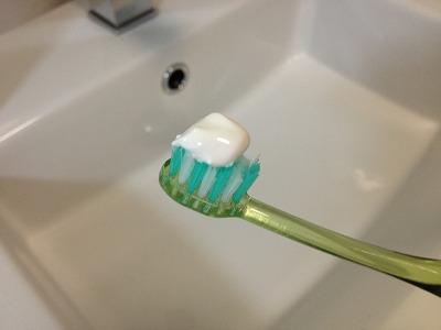 Chalmers Dale オーストラリア産プロポリス歯磨き粉