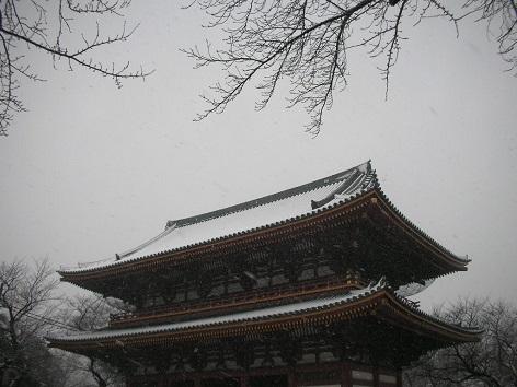 池上本門寺・雪のバレンタインDay