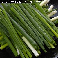お写真講座 グルメ編