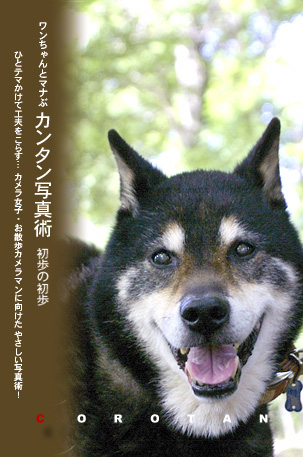 愛犬とマナぶ写真術 愛犬が笑った